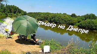 фидер на реке Днепр рыбалка в смоленской области