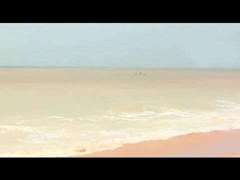 Acid destroys Kerala beach