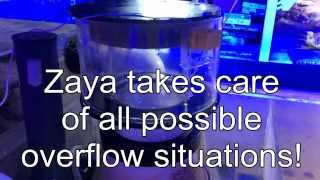 Zaya - The Protein Skimmer Overflow Protection System