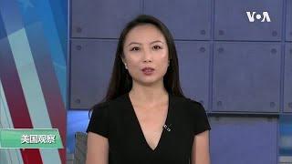 2020国会选举 参议院选战为关注焦点 - YouTube