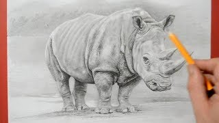 How to Draw a Rhinoceros - Realistic Pencil Drawing
