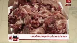 بالفيديو.. ضبط طني لحوم خنازير قبل توزيعها في السيدة زينب