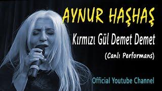 Aynur Haşhaş - Kırmızı Gül Demet Demet (Canlı Performans)