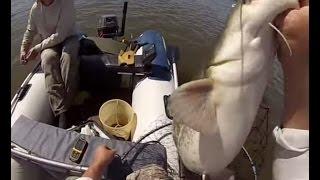 Хвост, чешуя: 38 выпуск - рыбалка в Астрахани, Рыбалка на р.Бахтемир, у с.Замьяны и в городе