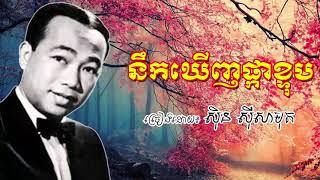 nek khernh pka ktom - sin sisamuth old song - នឹកឃើញផ្កាខ្ទុម ស៊ិនស៊ីសាមុត