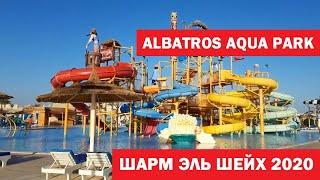 Albatros aqua park Шарм эль Шейх Египет