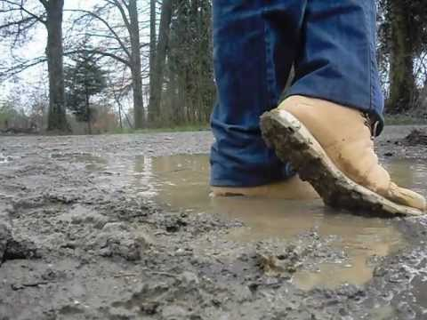 Cleaning up muddy puma in a puddle - YouTube 3b891f13c
