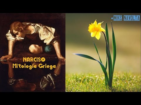 #46  Narciso Mitologia Griega