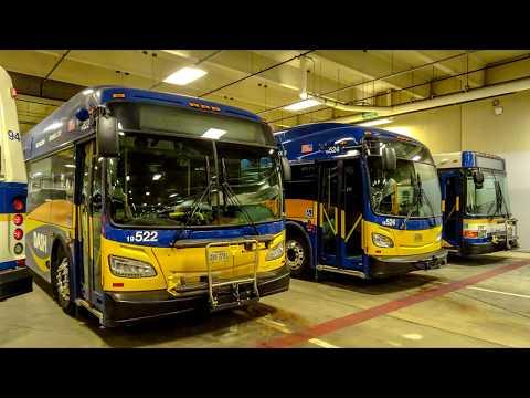 DASH Alexandria Transit Company Day Tour