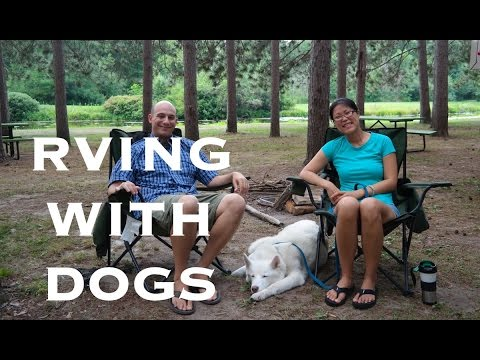 What It's Like To RV With Dogs | Full Time RVing