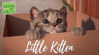 Little Kitten - My Favorite Cat (Fox and Sheep GmbH) - Best App For Kids