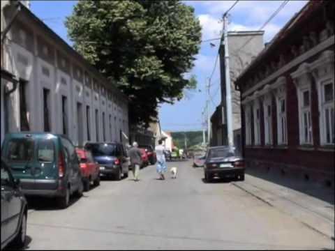 Visit of Zemun (Serbia)