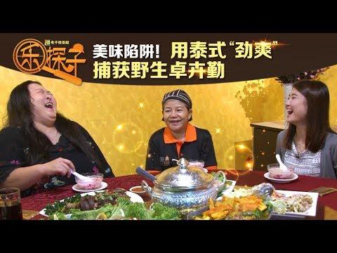 "美味陷阱! 用泰式""劲爽""野生捕获卓卉勤|Trapped in Thai Flavours"