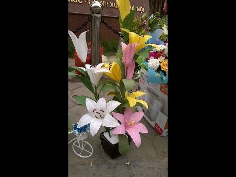 Hướng dẫn  làm hoa ly từ giấy nhún đẹp - paper lilies