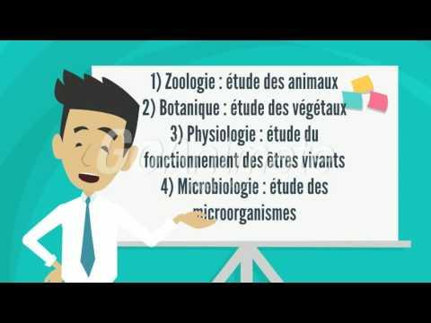 Quelques termes biologiques
