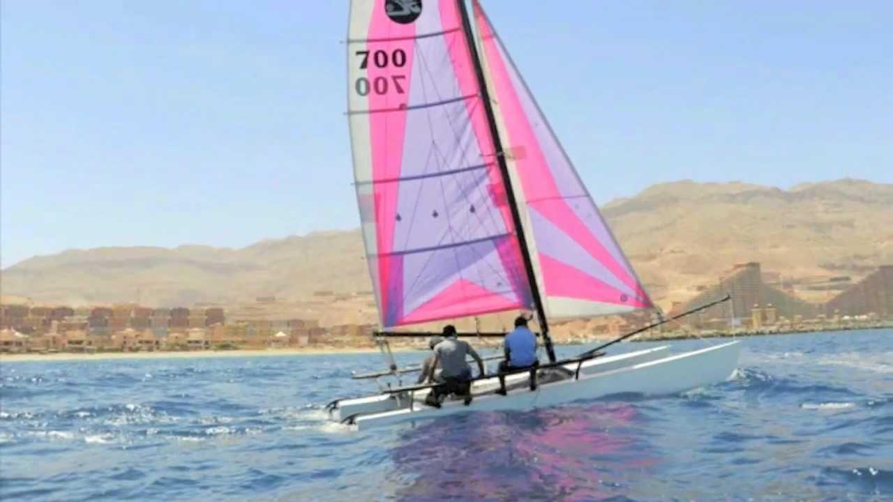 Cat Sailing Video