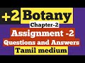 12th Botany July Month Assignment Answer Key Download PDF Tamil Medium