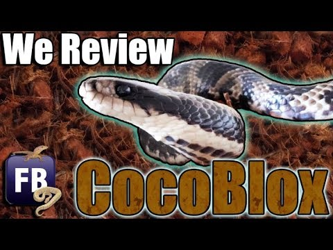 Trying a new substrate- CocoBlox