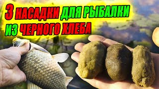 ТОП 3 НАСАДОК для РЫБАЛКИ из ЧЕРНОГО ХЛЕБА Какая отработает ЛУЧШЕ Рыбалка по РЕЦЕПТУ от ПОДПИСЧИКА