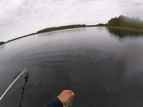Fiske i Hälsingland 2