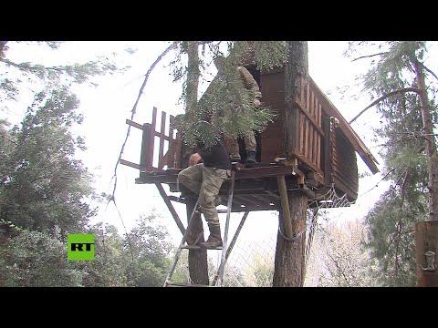 RT en Español: Tres montañeros se aíslan en una casa de árbol para evitar el coronavirus