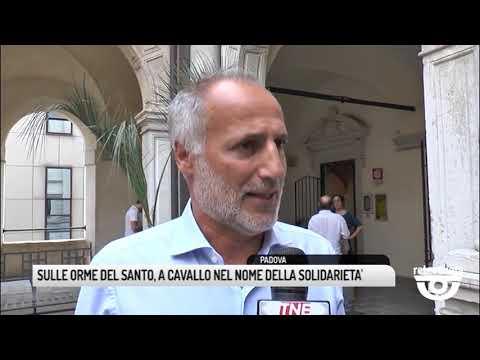 TG BASSANO (19/06/2019) - SULLE ORME DEL SANTO, A ...