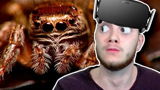Я НЕ БОЮСЬ ПАУКОВ! | Arachnophobia Oculus Rift DK2