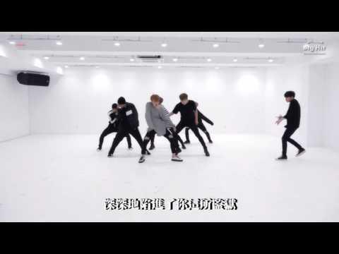 【中字】BTS (防彈少年團) - 피 땀 눈물 (Blood Sweat & Tears / 血汗淚水) Dance Practice 舞蹈室版本