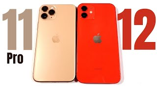 iPhone 11 Pro vs iPhone 12 - Don't Make A Mistake