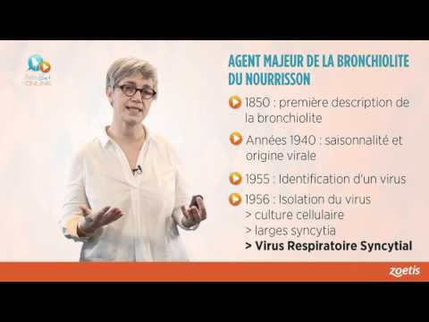virus syncytial respiratoire frissons