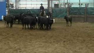 SOLD!Freckles Cutter Doc NCHA AQHA cutting horse for sale