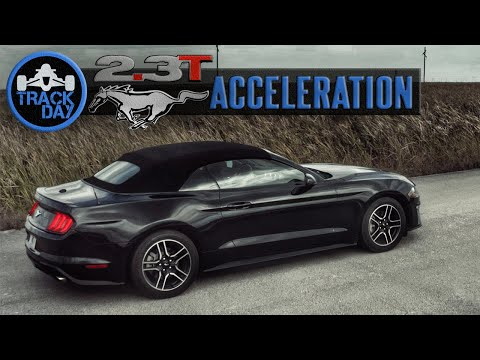 How Fast is the Ecoboost Mustang 2.3L Premium [310HP] | Acceleration Test Review