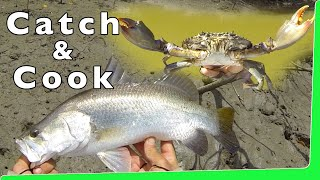 Catch n Cook 🔥 Mud Crabs 🦀 with Barramundi Fishing EP.345