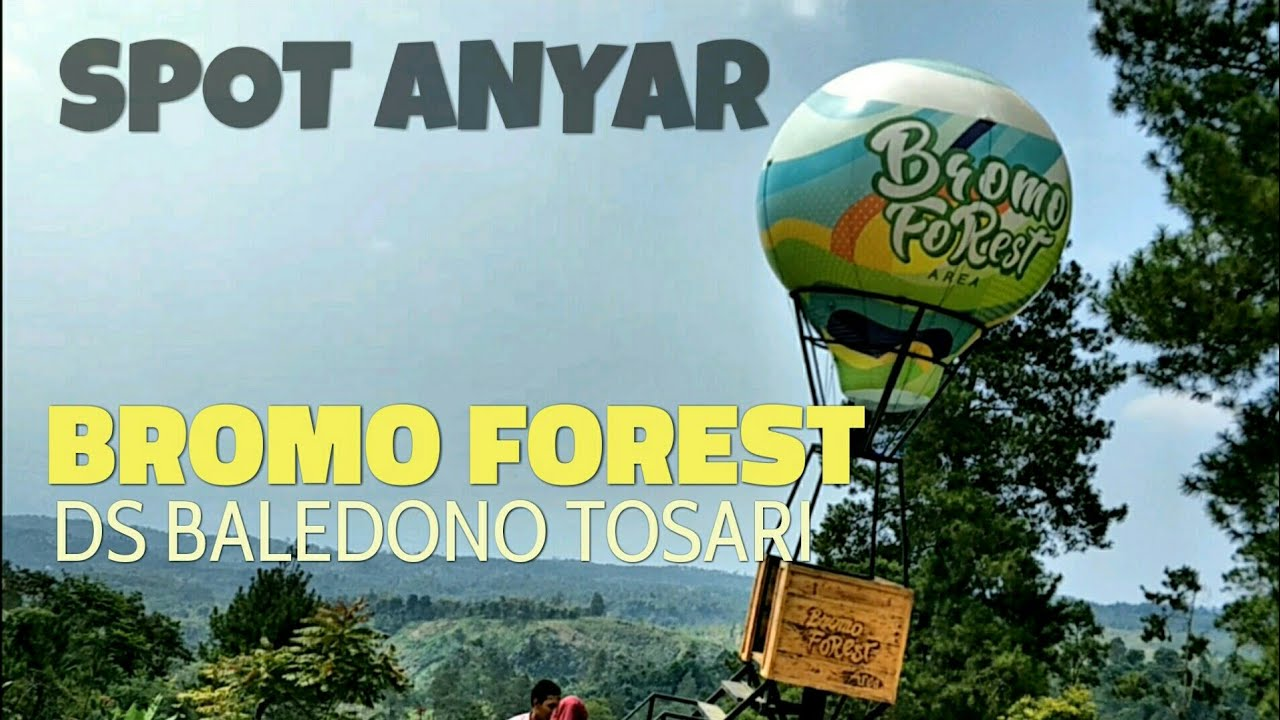 Spot Anyar Bromo Forest Area Baledono Tosari