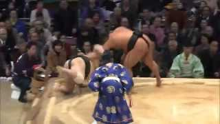 Ultimate FightBox Sumo