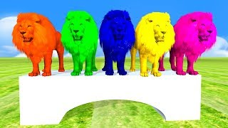 Lion jumping Finger family nursery rhymes songs for toddlers,finger family rhymes lion,children