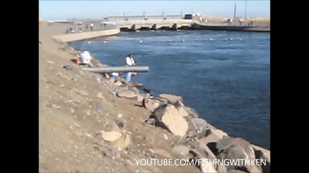 San luis reservoir fishing striped bass checkpoint 12 for San luis reservoir fishing report