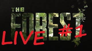 Multiplayer (CO-OP) The Forest (UPDATE)(V0.63b) LIVE #1