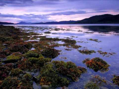 Michele McLaughlin - The North Sea