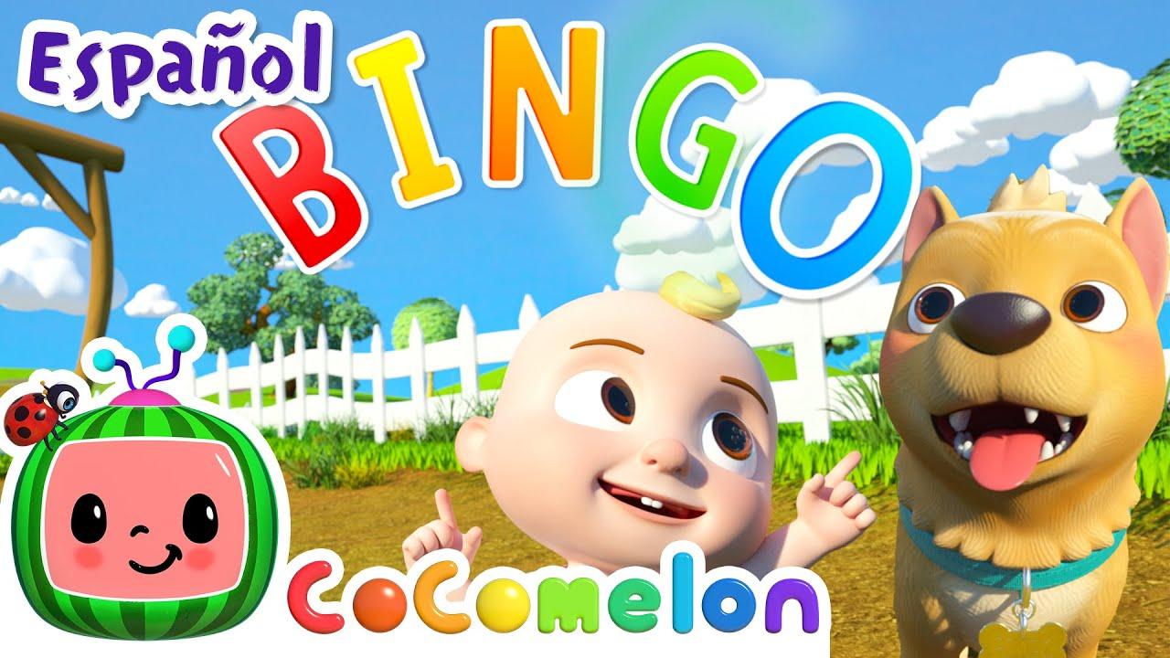 CoComelon en Español | BINGO | Canciones Infantiles