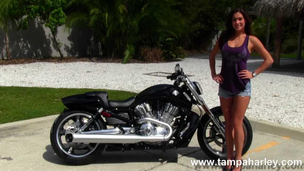 New 2013 Harley-Davidson VRSCF V-Rod Muscle for Sale - YouTube