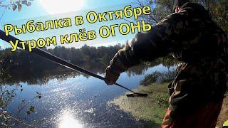 Как ловить леща в октябре Ловля на фидер осенью Рыбалка на фидер2021 Фидерная ловля осенью на реке