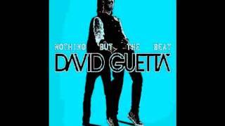 Baixar David Guetta-Nothing But The Beat MIX (Part 2)