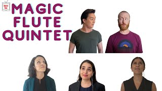 The Magic Flute Quintet by W A  Mozart (Virtual Opera)