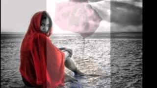 The Bitter Rose /  Stephen Allen Davis