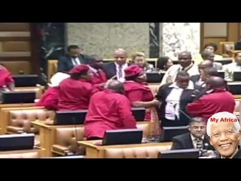 Fight And Chaos In South Africa National Assembly. Jacob Zuma Is A Thief.