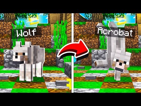 how-to-upgrade-minecraft-dogs!