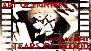 Art of Fighters - Tears of blood (DJKurara Remix)