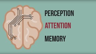Neuromarketing: Inside the Mind of the Consumer
