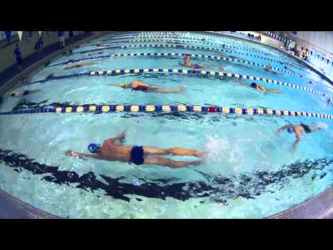 Mercersburg Swim Clinics